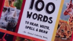 Teach your Child 100 Words to Read, Write, Spell, and Draw – Thinking Tree by Sarah Brown
